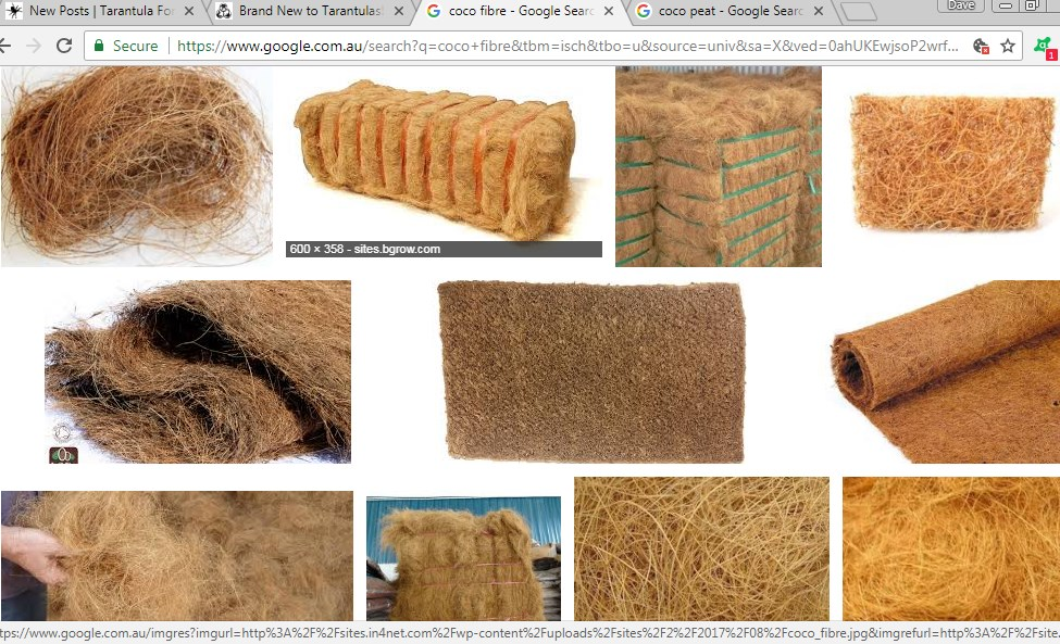 coco fibre.jpg