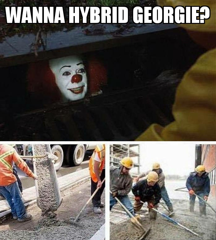 Pennywise in the Sewer 2 14032019202807.jpg
