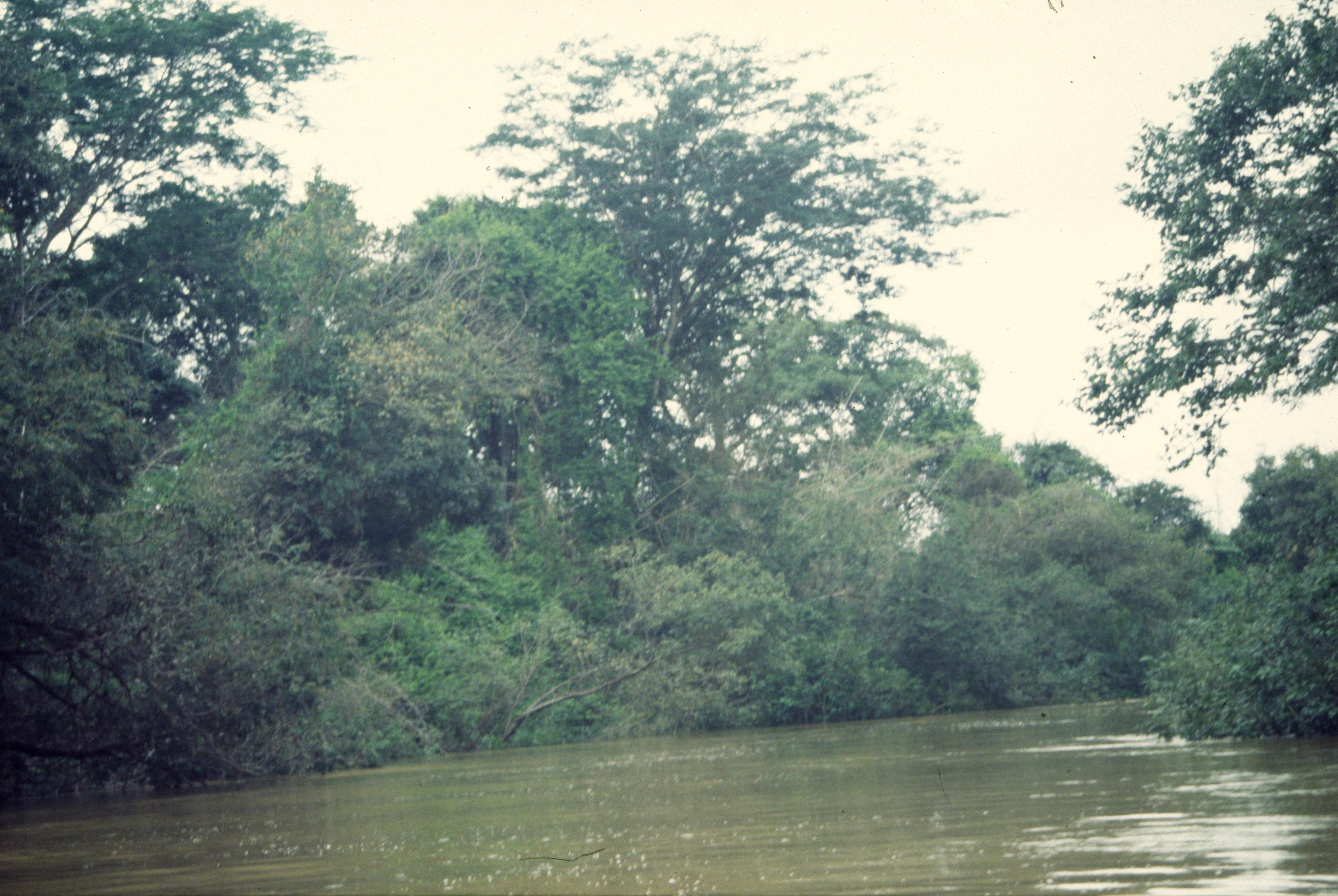 the river0113.JPG