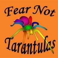 Arachnoamator