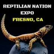 Reptilian Nation Expo